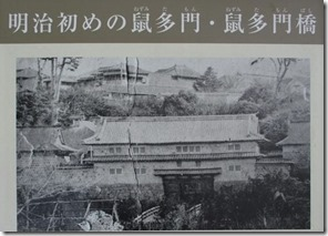 nezumitamon2-600x448