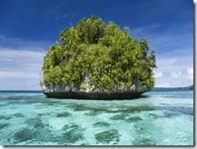 パラオの島